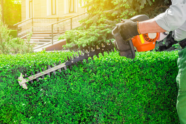 Hedge Trimmer Repairs